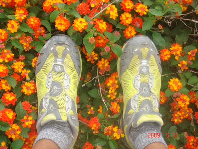 My TNF Arnuva 50 BOA Road/Trail Shoes