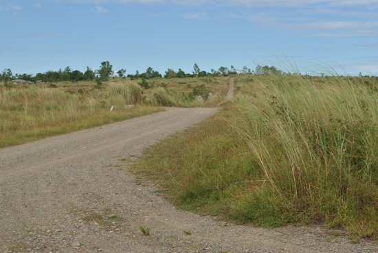 Dirt Road To The Fort Magsaysay-Laur Highway