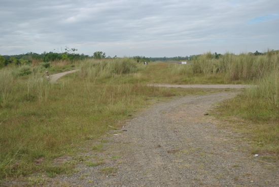 END OF THE AIRSTRIP. Runners Shall TURN LEFT Towards Bataan Road