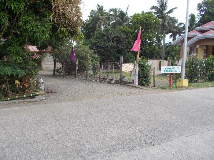 "Turn Left On This Alley With The Sign ""Purok Tanguige"""
