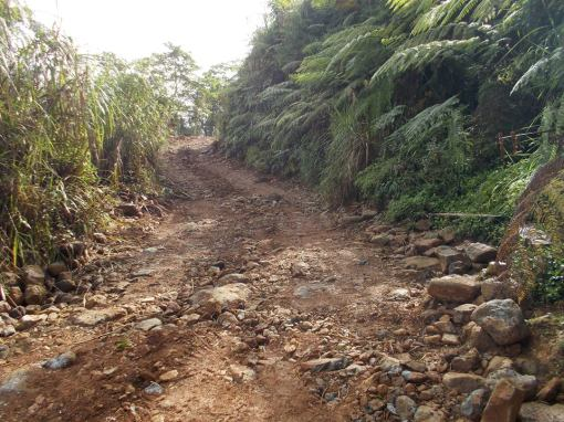 Tapulao Trail @ Km #10 & Water Source