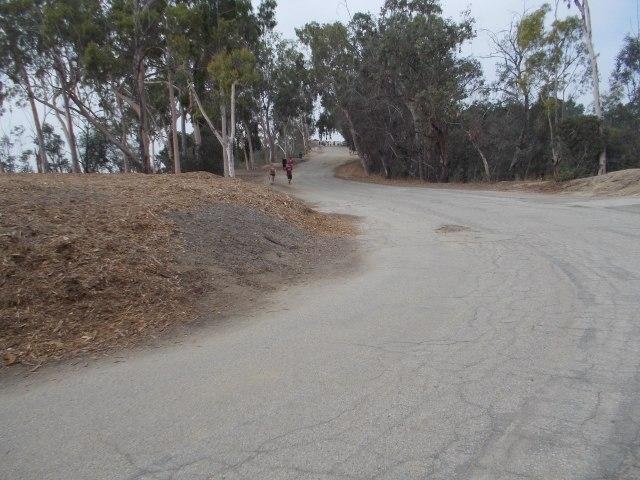 Vista Del Valle Drive