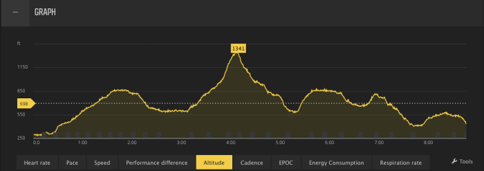 drt-elevation-profile