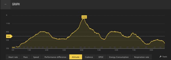 drt-elevation-profile