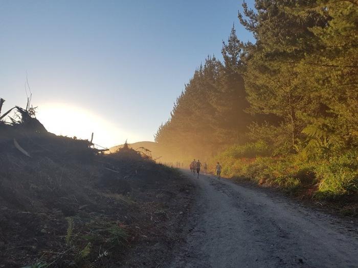 Tarawera Dirt Dusty Road